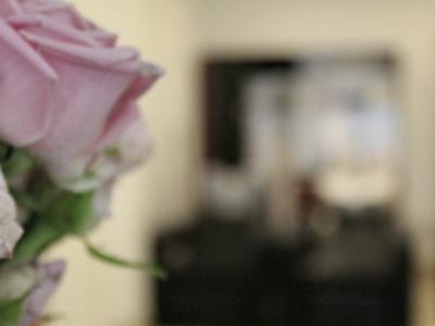 Róża na tle lustra